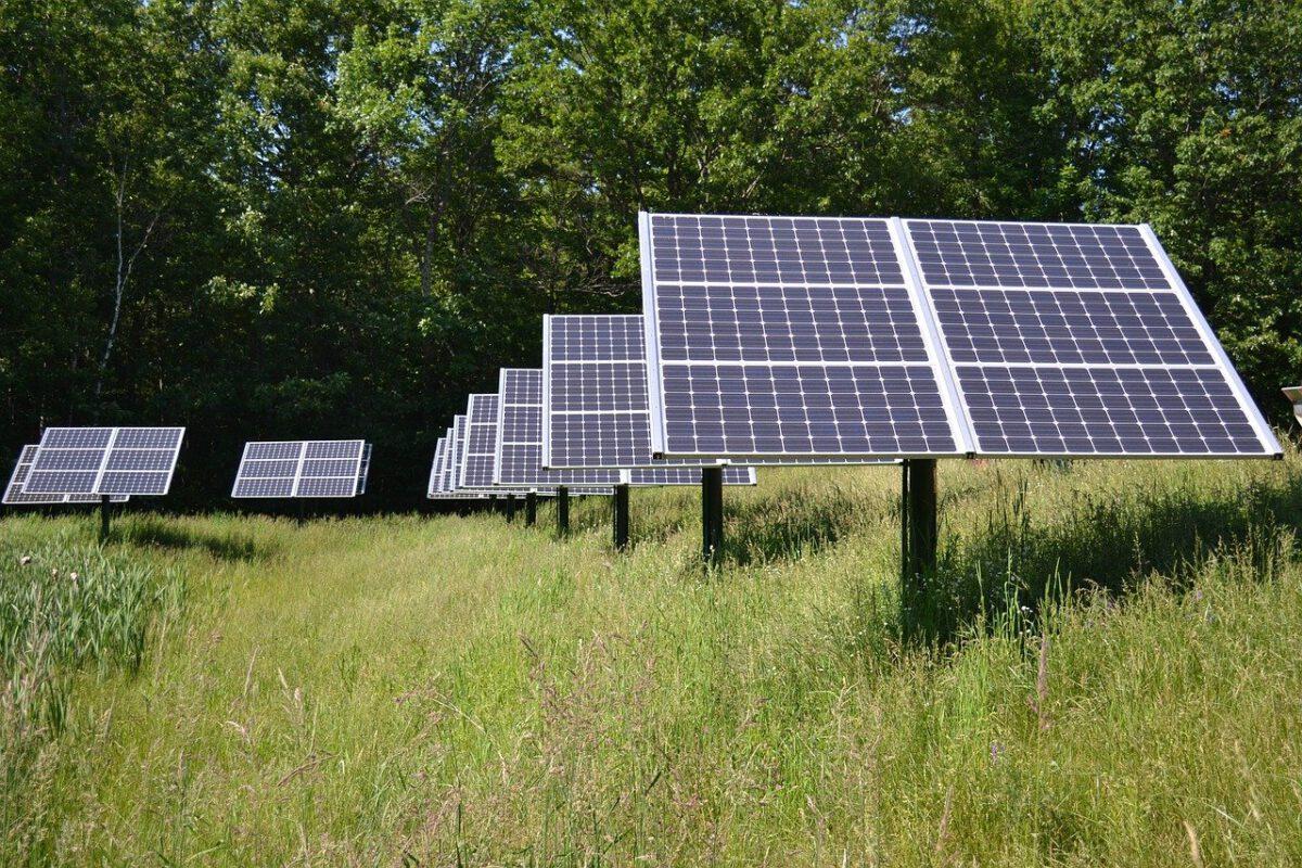 Photovoltaik-Anlagen auf einer wilden Wiese